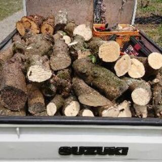(薪   譲って下さい‼️)薪ストーブで使用)・ 伐採木(原木)...