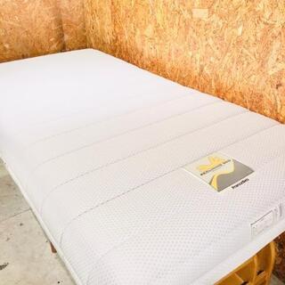 フランスベッド ルーパームーブ RP-1000DLX 電動ベッド...