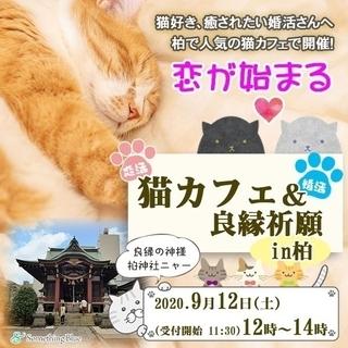 \猫好きさん集まれ~!!!/ 恋が始まる猫カフェ&良縁祈願 in 柏