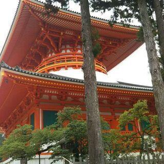 城郭・神社仏閣巡り
