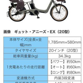 2019年ギュットアニーズEX・定価17万1504円+別売り雨除...