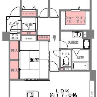 ペットちゃんと過ごせるマイホーム(^^)/ ウォークインクローゼ...
