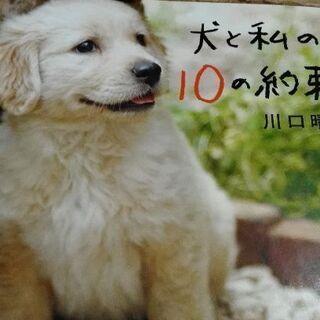犬と私の10の約束 【ムベの本棚】文藝春秋