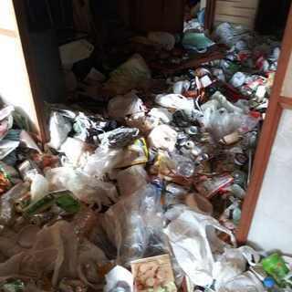 ゴミ屋敷 環境整理 生活改善