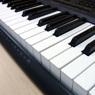 カシオ 電子ピアノ 電子キーボード 61鍵盤 CASIO CTK-2200 ACアダプタ付き - 札幌市