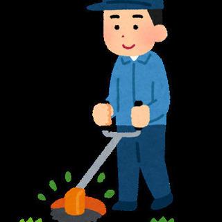 【大分県内】草刈り安く承ります!5000円〜