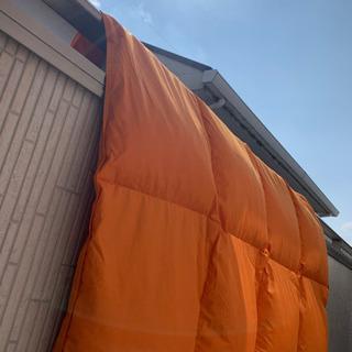 オレンジ羽毛布団