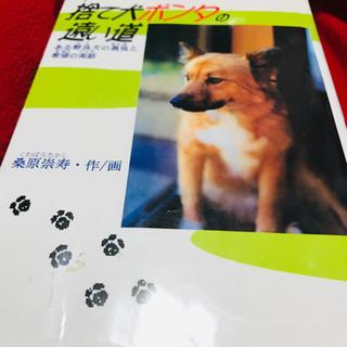 【読書感想文に!】児童書 捨て犬ポンタの遠い道