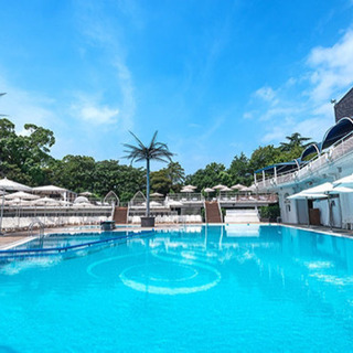 男女でプール付きホテルに行きたいです