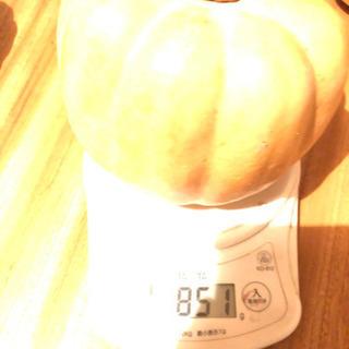 200g100円 かぼちゃ