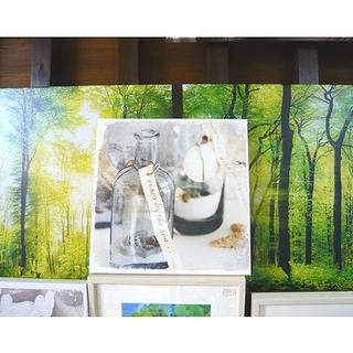 札幌【ウォールアート】28.5×28.5 壁掛け アートパネル ...