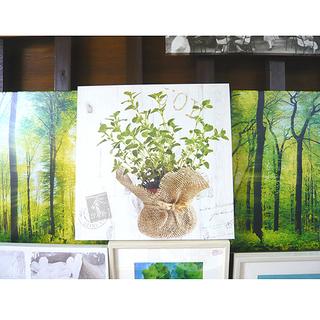 札幌【ウォールアート】36.5×36.5㎝ 壁掛け アートパネル...