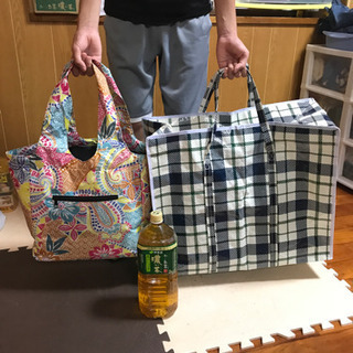 マイバッグ、保冷用とビニールのデカいやつ2枚の画像