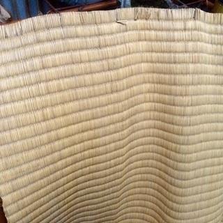 一回のみ使用  天然い草 ゴザ 敷物 87×84cm