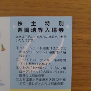 グリーンランド 遊園地 入場券 入園券 ① - 札幌市