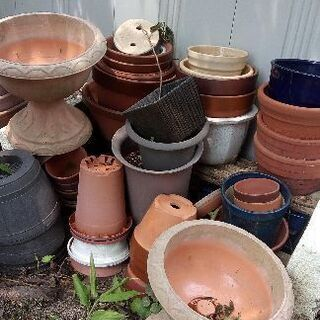 植木鉢各種無料