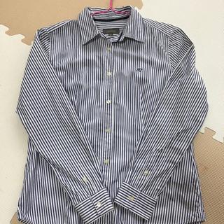 Field/dreamシャツ