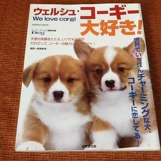 【古本/雑誌】コーギー 大好き 恋してる ワンちゃん本 ドッグ・...