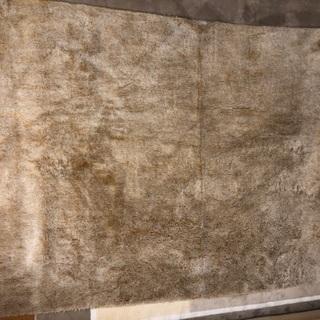アクセントラグ、ラグ、絨毯 価格変更しました