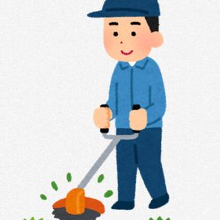 草刈り,草抜きでお困りの方、丁寧迅速にお承ります^ ^