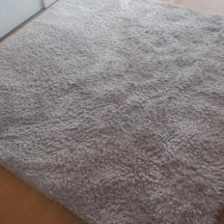 Francfranc 絨毯 カーペット