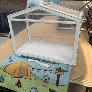 IKEAの卓上温室。 机の上でサボテンなど育てても良いよ!