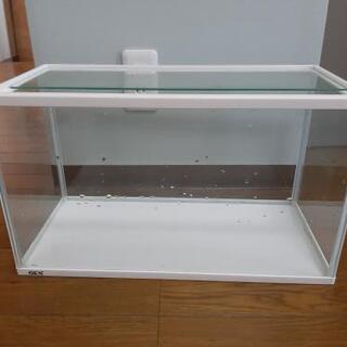 水槽50cm GEX
