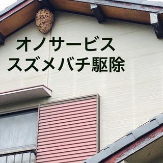 名古屋市 蜂の巣駆除、ヘビ、コウモリ、ネズミ、ゴキブリ - 地元のお店