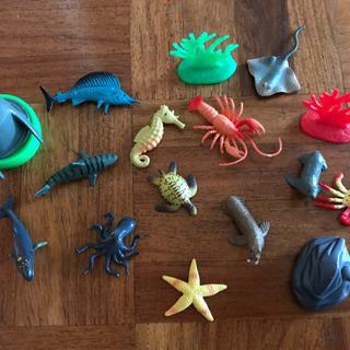 Ocean Set 海の生き物フィギュアセット おもちゃ インテリア