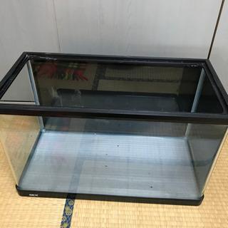 GEX60センチ水槽