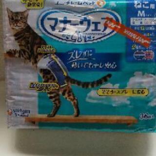 猫ちゃん用 オムツ 未使用