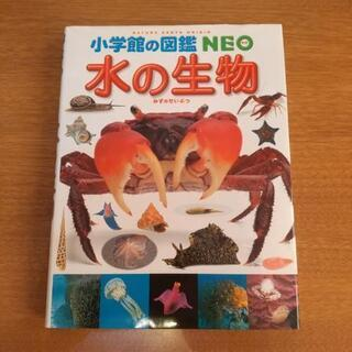 小学館の図鑑 NEO 【水の生物】