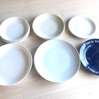平皿 6種類セット 合計10枚