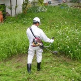 草刈り、お掃除、家のこと何でもお手伝い!