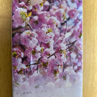 令和2年 桜の通り抜け 貨幣セット