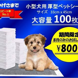 小型犬用ペットシーツ100枚入り 期間限定お試し価格 8月中のみ