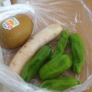 💕急募!野菜 食品💕