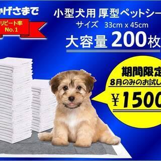 小型犬用ペットシーツ200枚入り 期間限定お試し価格 8月中のみ
