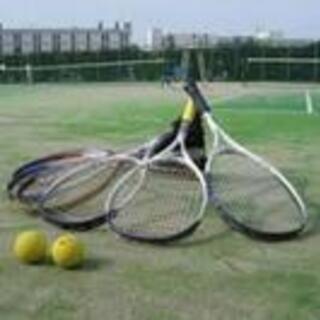 硬式テニスサークルメンバー募集!!🤗 【12/23(水) 9:0...