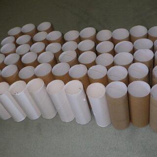 トイレットペーパーの芯、53個