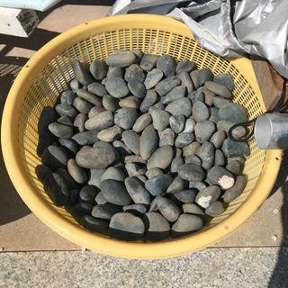 小さな庭石 1ケース200円
