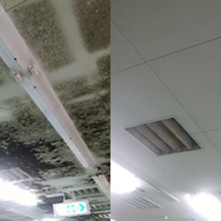 お家や会社のカビ汚れを解決しませんか?また、室内の除菌もこれを機...