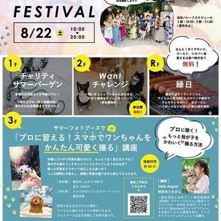 8/22土曜 神楽坂ピーナッツクラブでワンちゃんと夏祭りやります