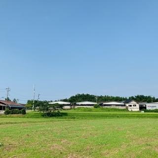 松阪まるよし玉城牧場での松阪牛の肥育管理スタッフ募集