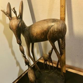 親鹿とおっぱいを飲む小鹿と餌をもらう子鹿、3頭‼︎ !