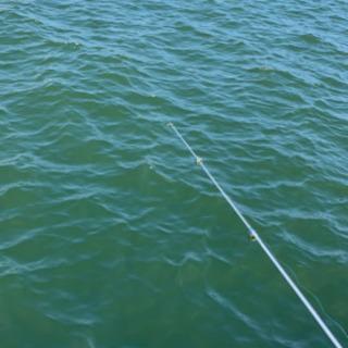 釣りを一緒にしませんか!