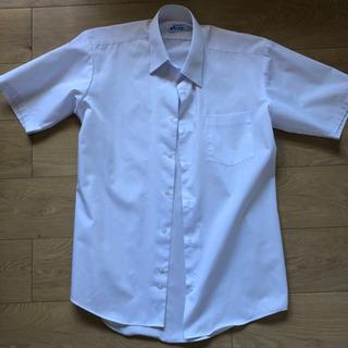 高校生 ワイシャツ A170サイズ
