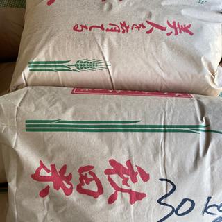 🌾2019年🌾籾保存🌾コシヒカリ8割あきたこまち2割MIX…