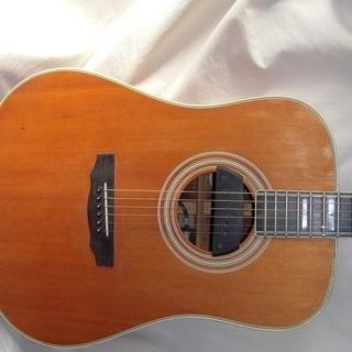 ギター プライベートレッスン