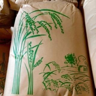 (令和3年)新米!三重県鈴鹿産コシヒカリ100%玄米30kg